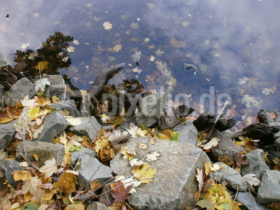 Herbst am Wolfssee