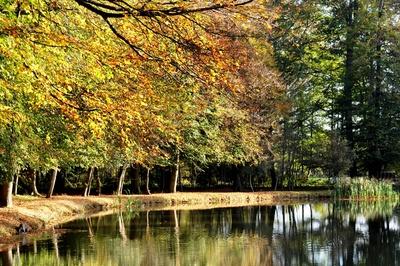 Bunter Herbstsee