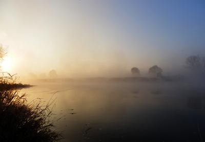 Schubverband im Nebel