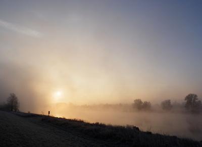 Nebelmorgen an der Elbe