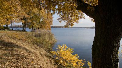 Herbst am Halterner See