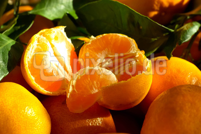 Sehr süße und saftige Mandarinen