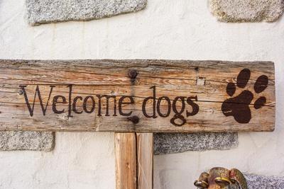 Zur Freude aller Hundehalter
