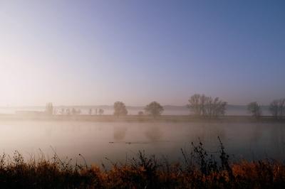 Ein anderer Novembermorgen am Fluss