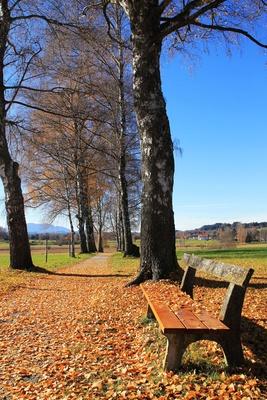 Herbstleuchten im November 05