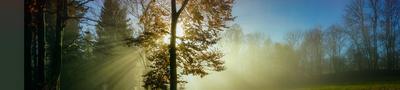 Morgensonne kontra Herbstnebel pano