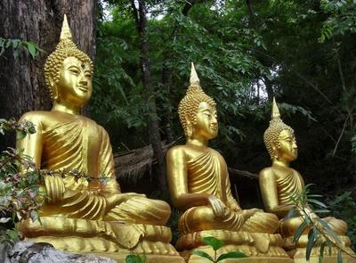 Buddhastatuen im Dschungel