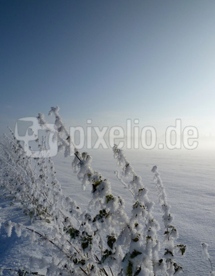 Dezemberschnee