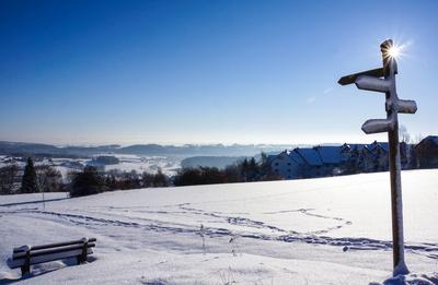 Wegweiser durch die Winterlandschaft