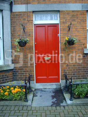 Haustür in Dublin, Doors of Dublin