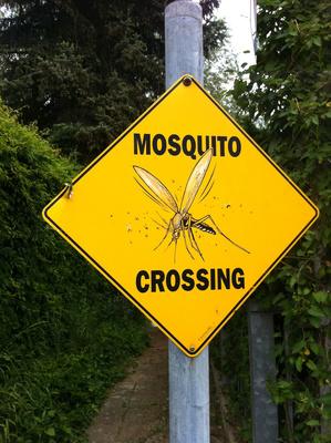 Verkehrsschild: Achtung Moskito kreuzt