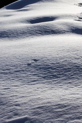Winterfreuden 01