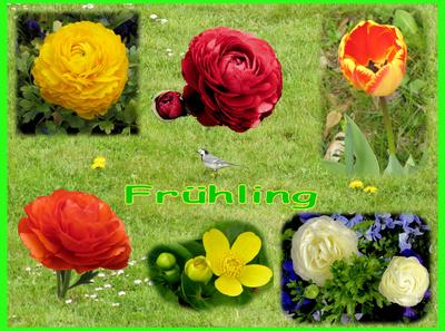 Frühlings-Collage