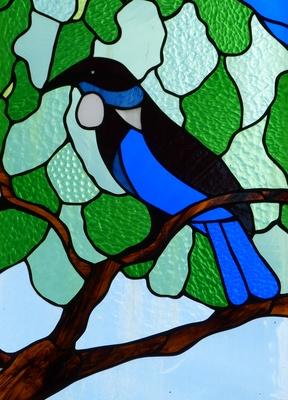 Vögel Neuseelands 2