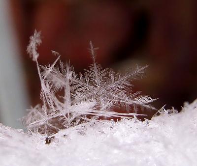 Fotoserie Schneeflocken