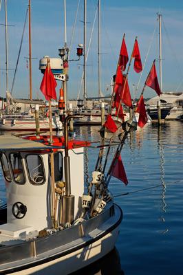 Fischerboot im Hafen