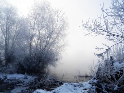 Januarmorgen am Fluss