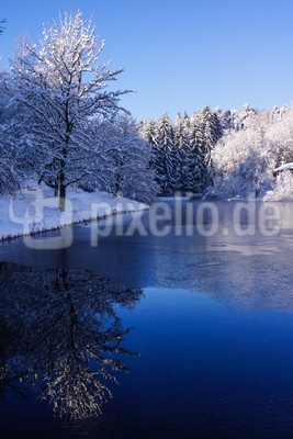 frostiger Waldsee_hoch