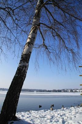 Wintertraum am Wörthsee