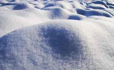 Schneehügelchen 03