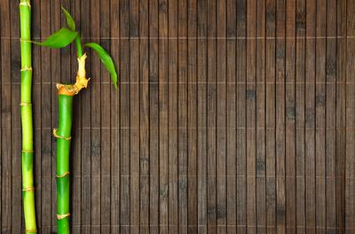 Bambus auf Bambusmatte