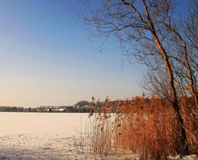 Schneefeldblick