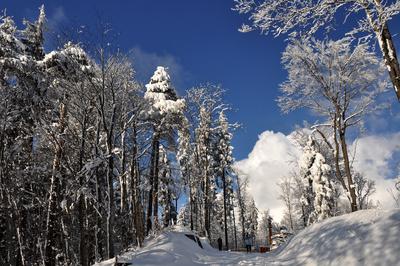 Schneereicher Februar