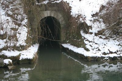 Wasserwelten im Steyr Wehrgraben
