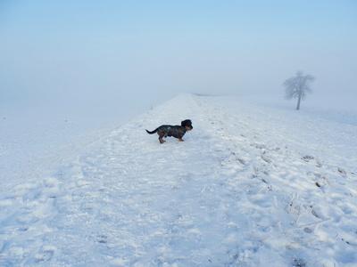 Wanderung bei minus 17 Grad