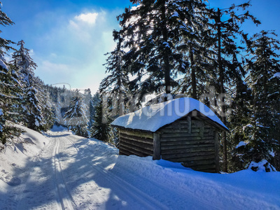Langlauf-Freuden im Schwarzwald