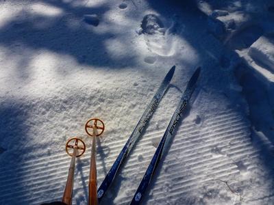 Langlauf - der gesunde Wintersport