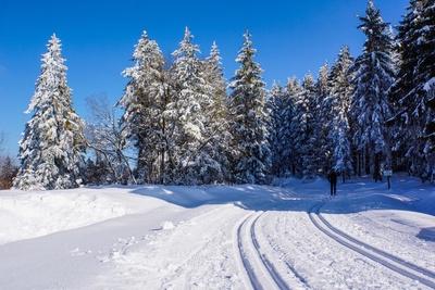 Gesunder Wintersport
