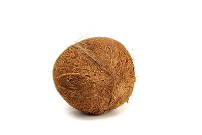 Kokosnuss 3
