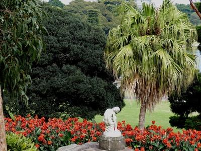 Sydney Bot. Garten 1