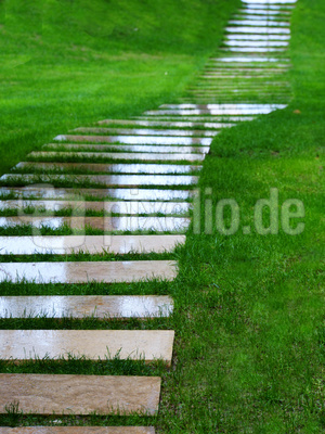 Der grüne Weg