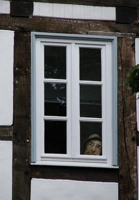 Der stille Beobachter im Fenster