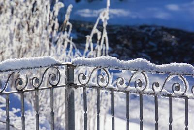 Frostige Wintergrüße