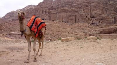 Königswand in der Felsenstadt Petra