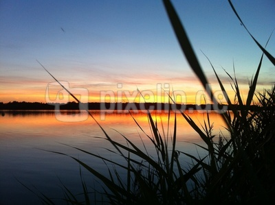 Cospudener See in Abendstimmung