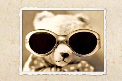 Teddybär II
