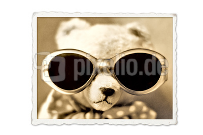 Teddybär III
