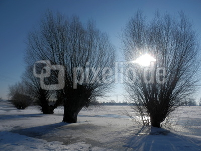 Am Elberadweg - Vorsicht Eis