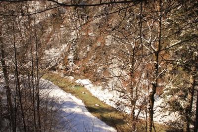 Die Partnach - ein Wildbach im Reintal 01