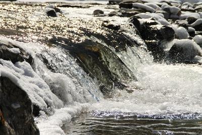Die Partnach - ein Wildbach im Reintal 10