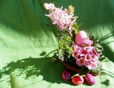 Ostergrüße in Pink