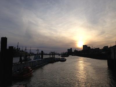 Abendlicher Blick über die Elbe im Hamburger Hafen