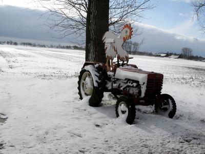Kostenloses Foto Ostern Im Schnee Pixelio De