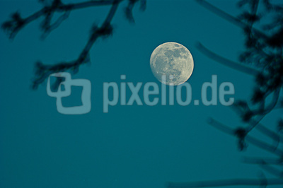 Mond am blauen Himmel