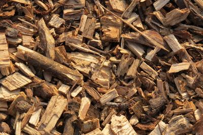 Hackschnitzel Holz