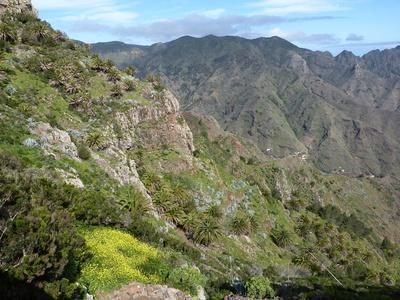 Kanaren: La Gomera 1